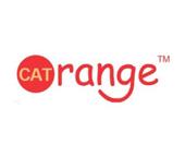 CAT ORANGE!