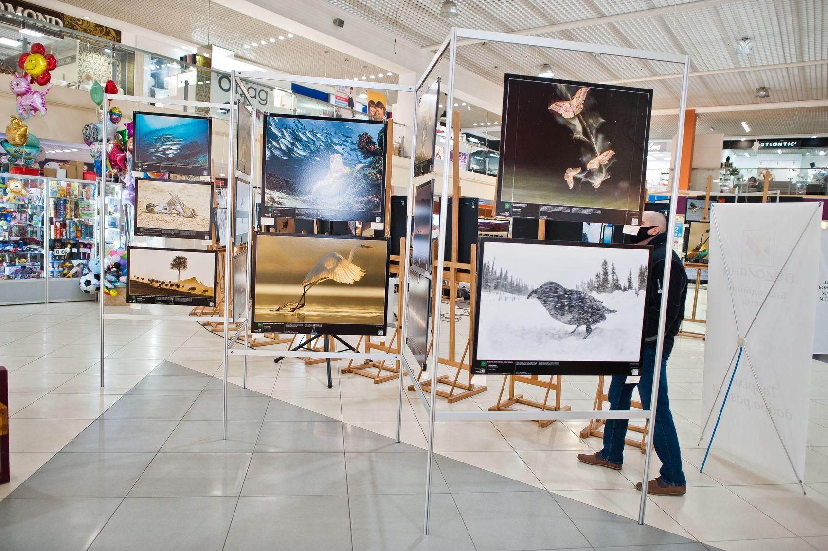 """Відкриття виставки """"Ленерджі - кращі фото природи"""""""
